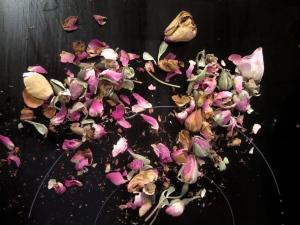 The Kingdom of Flowers