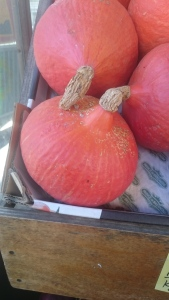 """Potimarron"" - red kuri squash"
